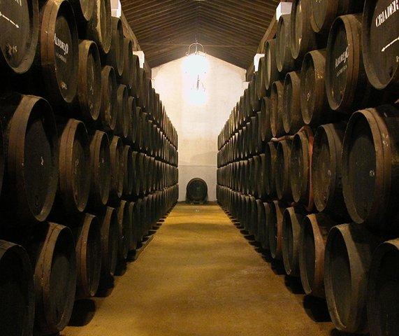 Spanish Bodiga Wine Cellar